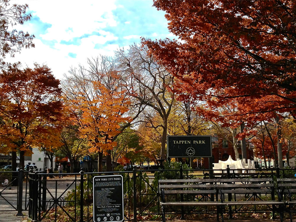 Tappen Park | Holly's Staten Island Buzz Realty