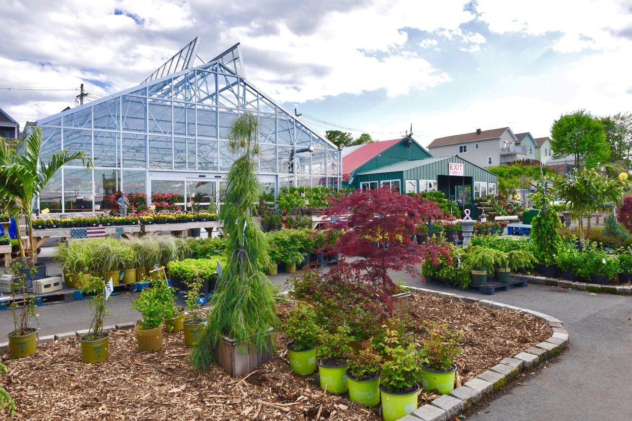 Gerardi's Farmer's Market & Nursery