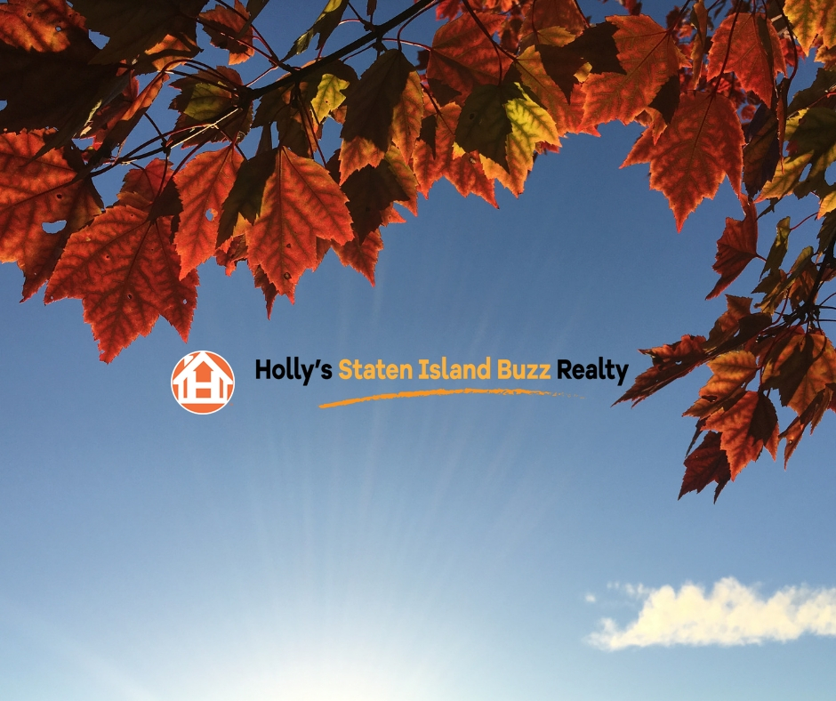 Fall Leaves in the sky with a cloud and a sunburst with the Holly's Staten Island Buzz Realty logo