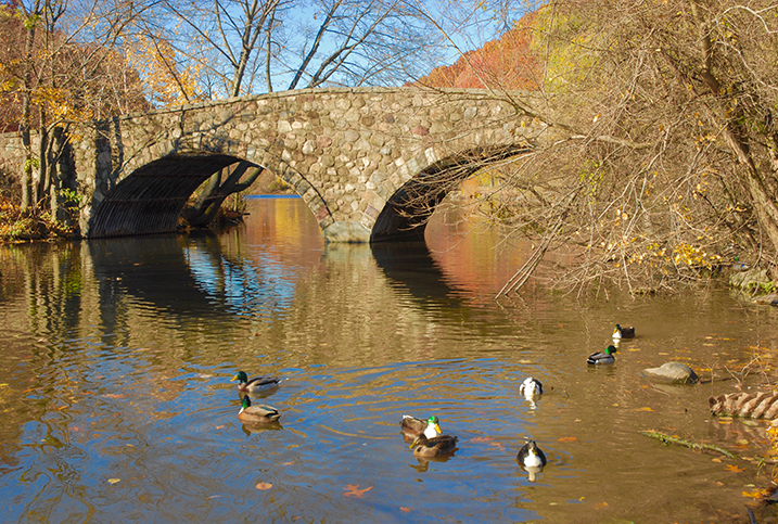 Silver Lake on Staten Island